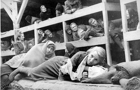 an overview of the auschwitz nazi concentration camp Holocaust scholars draw a distinction between concentration camps (described in this article) and extermination camps, which were established by nazi germany for the industrial-scale mass murder of jews in the ghettos by way of gas chambers.